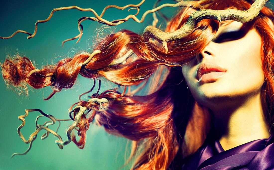 The Hair X-perience 2017